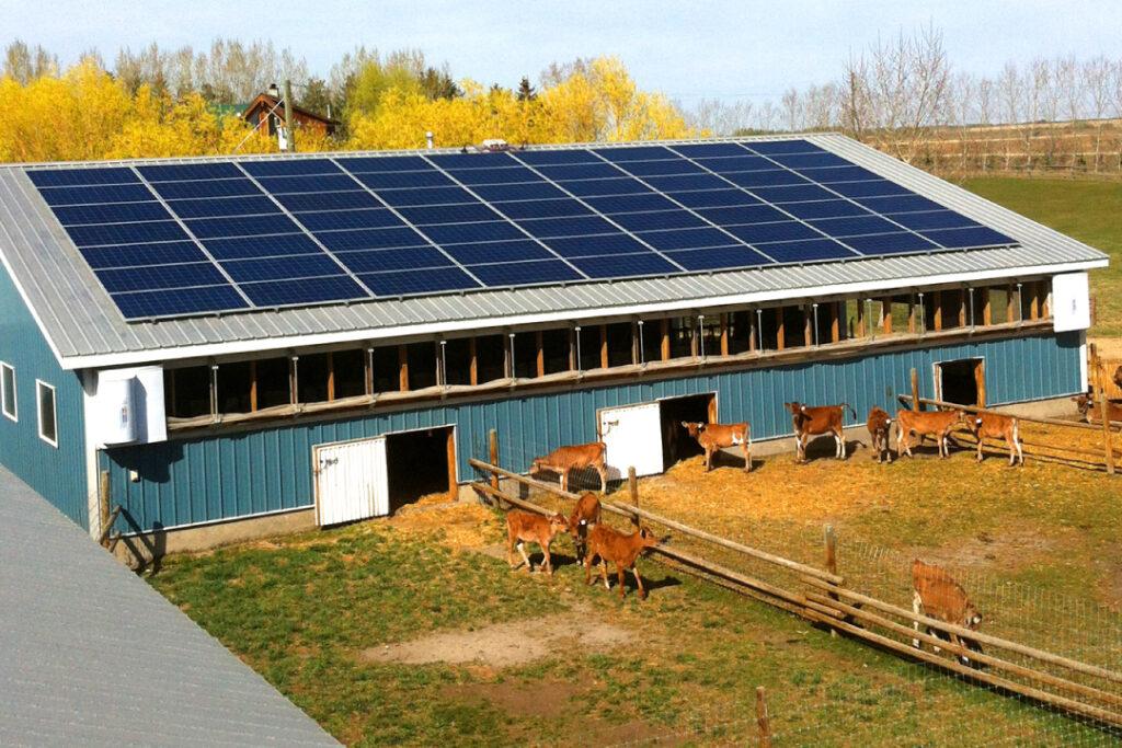 Haeni-Dairy-Farm